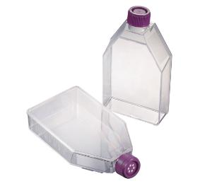 Cell culture flasks non treated or treated, sterile